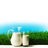 Glass of milk and jar on flower meadow Royalty Free Stock Photos