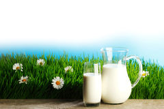 Glass of milk and jar on flower meadow Royalty Free Stock Photography