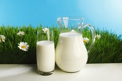 Glass of milk and jar on flower meadow Royalty Free Stock Photo