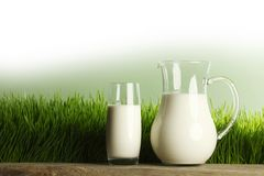 Glass of milk and jar on meadow Stock Images