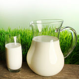 Glass of milk and jar on meadow Stock Photography