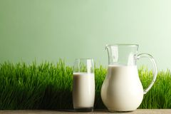 Glass of milk and jar on meadow Royalty Free Stock Photo