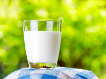 Glass of milk on nature background Royalty Free Stock Image
