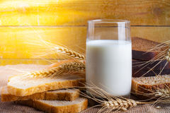 Glass of milk and sliced fresh bread for breakfast Royalty Free Stock Images