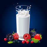 Glass of milk with splash and fruit on dark blue Royalty Free Stock Image