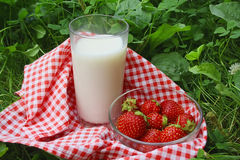 Glass of milk and strawberry on a grass. In summer day Stock Image