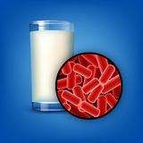 Glass of milk. Vector glass of milk with lactobacilli close up front view isolated on background Royalty Free Stock Photos