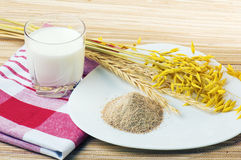 Glass of milk and wheat ears Royalty Free Stock Images