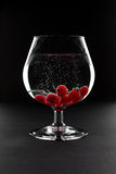 Glass with minerals and red currant Stock Photos