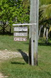 Glass mjölkar, och ost arkivbild