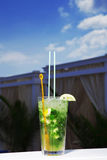 A glass of mojito cocktail Royalty Free Stock Photo