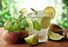 Glass of mojito cocktail Stock Images