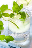Glass of mojito cocktail with rum and lime Royalty Free Stock Photos