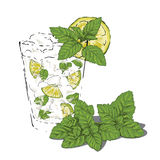 Mojito with mint. Glass of mojito garnished with fresh mint and lime. Illustrator 8 compatible. TECHNICAL INFO: color space: CMYK layers: drink, mint, mint royalty free illustration