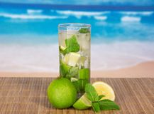 Glass with mojito, juicy lime and spearmint Royalty Free Stock Photos