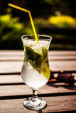 Glass of mojito with sunglasses. On the table in the garden Royalty Free Stock Photo