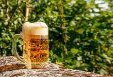 Glass mug with beer standing on the big stone Stock Image