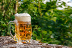 Glass mug with beer standing on the big stone Royalty Free Stock Photos