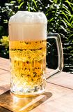 Glass mug with beer Royalty Free Stock Photo