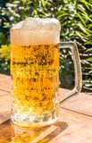 Glass mug with beer Stock Photo