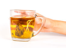Glass mug of herbal tea Stock Photos