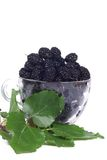 Glass of mulberry on white Stock Photography