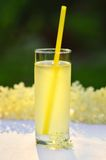 Glass of natural elderflower juice with lemon. Royalty Free Stock Photos