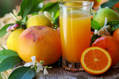 Glass of natural  juice Royalty Free Stock Image