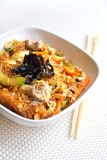 Glass noodles with beef, vegetables and eggs Royalty Free Stock Photos