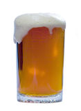 Glass Of Beer Stock Image