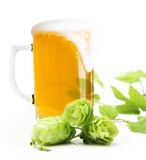 Glass Of Beer Isolated Stock Photos