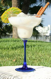 Glass Of Pi�a Colada Royalty Free Stock Photography