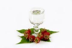 Free Glass Of Raspberry Booze Stock Image - 4422391