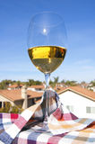 Glass Of White Wine And A Southern California View Stock Image