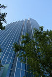 Glass office building towers over trees. Tall glass office building towering over trees Royalty Free Stock Images