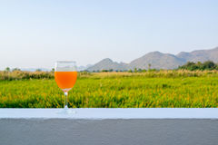 Glass of orange drink with back ground of mountains and grass field. Glass of orange drink on a white wall with background of mountains and grass field in the Stock Photography