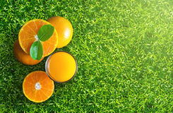 Glass of orange juice from above on green grass. Empty ready for Stock Photos