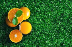 Glass of orange juice from above on green grass. Empty ready for Royalty Free Stock Images