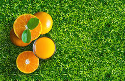 Glass of orange juice from above on green grass. Empty ready for Royalty Free Stock Photo