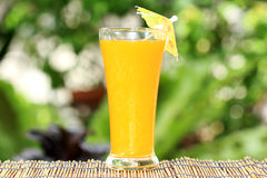 Glass of of orange juice Royalty Free Stock Images