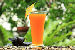 Glass of of orange juice Stock Images