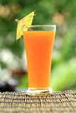 Glass of of orange juice Royalty Free Stock Photo