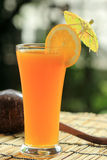 Glass of of orange juice Stock Photography