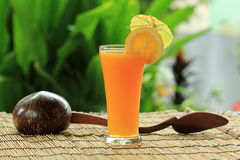 Glass of of orange juice Royalty Free Stock Photography