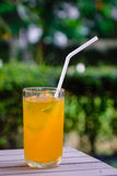 Glass of orange juice. At sunny day with nature background Stock Photography