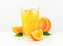 Glass of orange juice Royalty Free Stock Photo