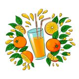Glass of orange juice with oranges, leaves and drops of juice. Vector illustration of a glass of orange juice with two straws with a group of whole, halves and Royalty Free Stock Image