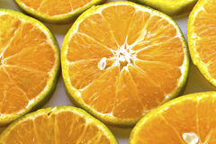 A glass of orange juice and sliced oranges Stock Images
