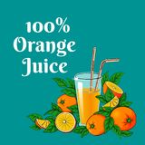 Glass of orange juice surrounded by oranges and leaves. Vector illustration of a glass of orange juice with two straws surrounded by group of whole, halves and Royalty Free Stock Images