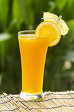 Glass of of orange juice Royalty Free Stock Image